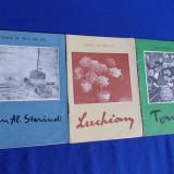 MUZEUL DE ARTA DIN IASI - LUCHIAN - TONITZA - JEAN AL.STERIADI - 1974