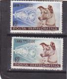 Catelusa Laika , Nr lista 447 ,Romania.