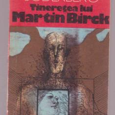 (C73) Hjalmar Soderberg - Tineretea lui Martin Birck