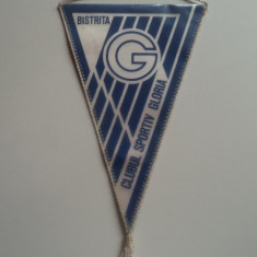 Fanion fotbal GLORIA BISTRITA