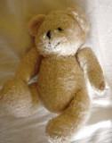 Ursulet plus alb de la Emirates, folosit