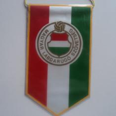 Fanion Federatia de Fotbal din UNGARIA