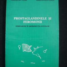 CONSTANTIN CULEA, MARIA-ANGELA STOICA - PROSTAGLANDINELE SI FEROMONII - STIMULENTE IN REPRODUCTIA SUINELOR - Carte Medicina veterinara