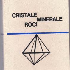 10A(205)- G.Mastacan-CRISTALE MINERALE ROCI