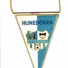 Fanion fotbal FC CORVINUL HUNEDOARA