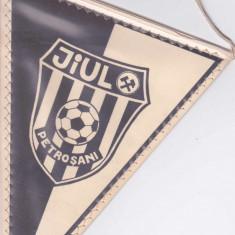 Fanion fotbal JIUL PETROSANI in medalion Cavai - portarul