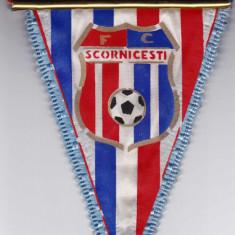 Fanion fotbal FC SCORNICESTI