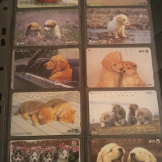 Lot 20 cartele telefonice cu caini, China 2 + folie de plastic + taxele postale = 30 roni