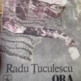 Radu Tuculescu - Ora Paianjenului - Roman, Anul publicarii: 1984