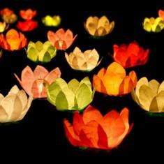 Set 6 lampioane plutitoare