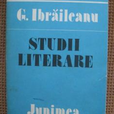 Garabet Ibraileanu - Studii literare - Studiu literar