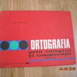 ORTOGRAFIA PRIN IMAGINI SI COMPARATII-ION P. NECULA - Carte educativa