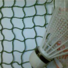 Fileu de badminton