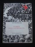 VICTOR FRUNZA - TURMA ROMANUL UNEI VIZITE DE LUCRU