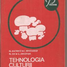 (C4028) TEHNOLOGIA CULTURII CIUPERCILOR DE N. MATEESCU SI I. BENGULESCU, EDITURA CERES, BUCURESTI, 1975 - Carte gradinarit