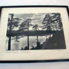 Superba litografie veche pe carton din anul 1936, semnata Sam Lindskog (8)