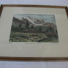 Superba litografie veche pe carton (4)