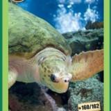 [MEGARAR] Cartonase Mega Image Minunile Planetei - Nr.160 - Cartonas de colectie