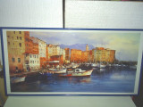 Tablou - 50x100 cm -Import Franta - Mogliani / rama aluminiu