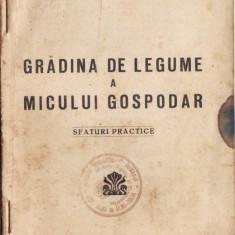 GRADINA DE LEGUME A MICULUI GOSPODAR. SFATURI PRACTICE de I. HAGI - CULEV (1935) - Carte gradinarit