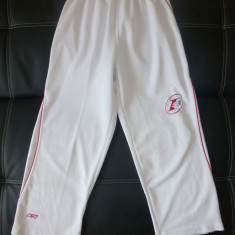 Pantaloni trening superbi Reebok LIMITED EDITION, model I3; marime S, vezi dim. - Pantaloni barbati Reebok, Marime: S, Culoare: Din imagine