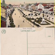 Targu Mures - Piata - Carte Postala Transilvania 1904-1918, Necirculata, Printata