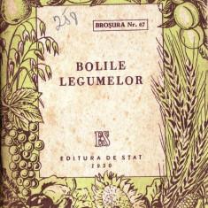 BOLILE LEGUMELOR - Carte gradinarit