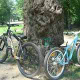 Vand UMF Hardy 2 !!! - Mountain Bike, 24 inch, Numar viteze: 1, Aluminiu, Verde-Albastru, Discuri