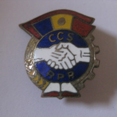 INSIGNA R.P.R.  CCS