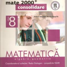 (C4115) MATE 2000 CONSOLIDARE, MATEMATICA CLASA A 8-A DE ANTON NEGRILA, PARTEA I, ALGEBRA, GEOMETRIE, EDITURA PARALELA 45, 2012, COORD. RADU GOLOGAN - Manual scolar paralela 45, Clasa 8