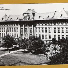 TIMISOARA RPR - Carte Postala Banat dupa 1918, Necirculata