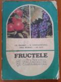 FRUCTELE SI SANATATEA - Gh. Badescu, M. Constantinescu, Lidia Badescu, Gr.Isac