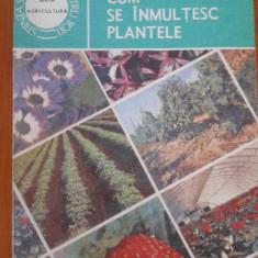 CUM SE INMULTESC PLANTELE - Valeriu Zanoschi - Carte gradinarit