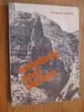 AMINTIRILE UNUI ALPINISM  --  Nicolae Baticu  - 1981,  221 p.