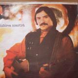 Vasile Seicaru-disc vinil-Electrecord