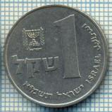 4256  MONEDA  - ISRAEL  - 1 SHEQEL  - anul  1981 ?  -starea care se vede
