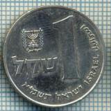 4261  MONEDA  - ISRAEL  - 1 SHEQEL  - anul  1981 ?  -starea care se vede