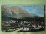 BUSTENI - Valea Alba - Necirculata