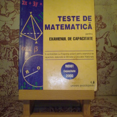 Iulian Georgescu - Teste de matematica pentru examenul de capacitate 2000 - Carte Teste Nationale