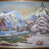 PEISAJ DE IARNA , pictura in  ULEI , inramata , tablou