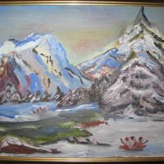 PEISAJ DE IARNA, pictura in ULEI, inramata, tablou - Tablou autor neidentificat