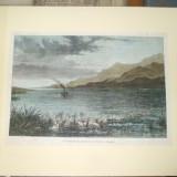 Gravura color confluenta Dunarii si a Prutului 1877 - 1878