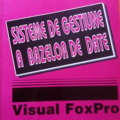 SISTEME DE GESTIUNE A BAZELOR DE DATE VISUAL FOX PRO - Tamas, Popa