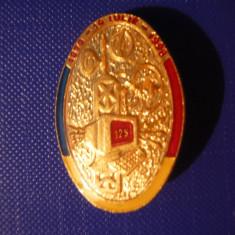 Insigna Militara Telecomunicatii Aniv.125 Ani, h= 3, 3 cm