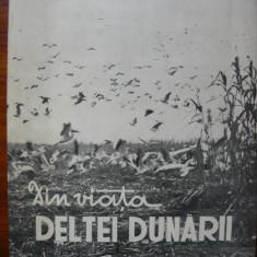 Din viata Deltei Dunarii ( Editata de Asociatia Generala a Vanatorilor si Pescarilor Sportivi ) - 1958 - Carte Geografie