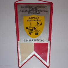 Fanion Polonia 1983 - Lupte Sportive