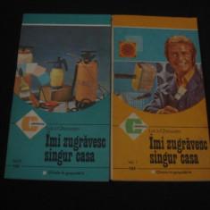 LUCA GHERASIM - AMI ZUGRAVESC SINGUR CASA 2 Volume {1986}