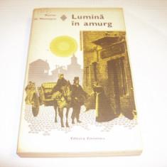 XAVIER DE MONTEPIN - LUMINA IN AMURG - Roman, Anul publicarii: 1977