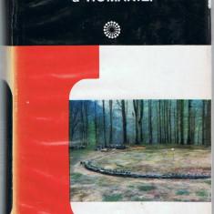 D.M. Pippidi s.a. - DICTIONAR DE ISTORIE VECHE A ROMANIEI (Paleolitic-sec X), Ed. stiintifica si enciclopedica, 1976, 625 pag. - Dictionar ilustrat