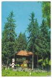 Carte postala(ilustrata)-HARGHITA-Cabana Homorod